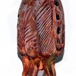 fossil-klevra4
